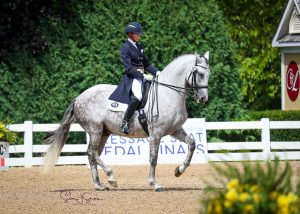 Riding a dressage horse in the show ring